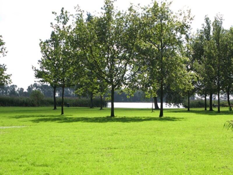 Naaktstrand Vlietland