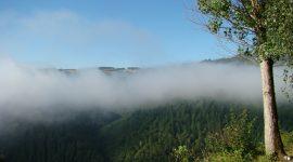 Naturistencamping Frankrijk Domaine de la Taillade