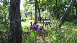 Naturistencamping Le Clos Marot