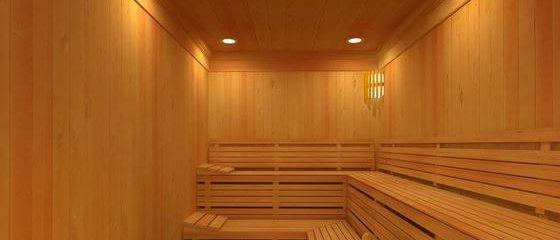 Sauna Grosthuizen