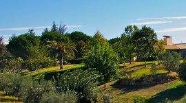 SunCave Garden