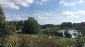 Natuurgebied Horsterwold Zeewolde - Flevoland