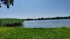 Naaktstrand Gaasperplas Park