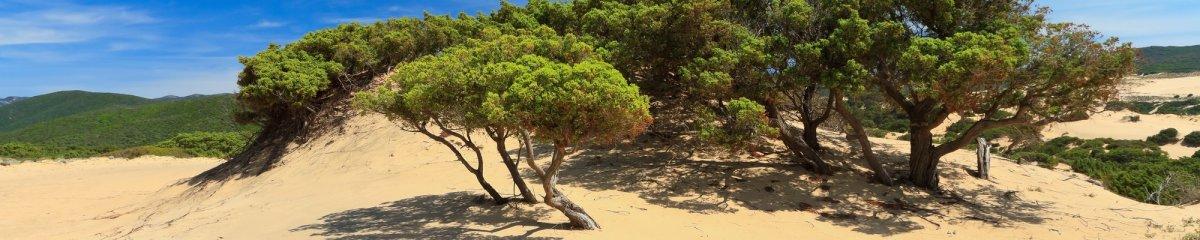 Naturisme in Sardinië