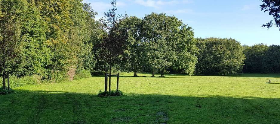 Zonneweide Amsterdamse Bos