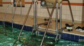 Zwemschool De Abeel BlootKompas!